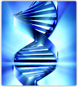 Genetic System