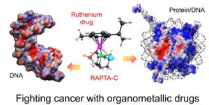 Experts Develop Metal Drugs to Fight Cancer