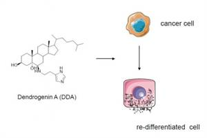 Discovery of a Mammalian Tumor Suppressor Metabolite