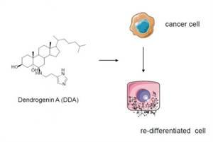 Discovery of a Mammalian Tumor Suppressor Metabolite