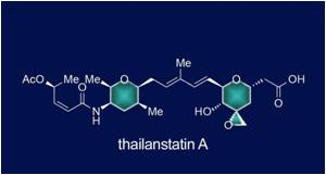 'Thailanstatin A' - a New Anti-Cancer Agent Synthesized by Rice University Lab