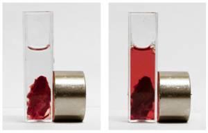 New Magnetically Controlled Drug Dissolves Blood Clots, Has Fewer Side Effects