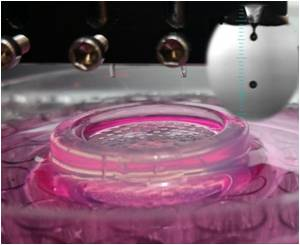 Five Ways Bioengineers Want to Use 3-D Bioprinting Technology