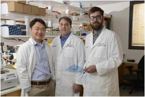 PARP Proteins Open the Door to Explore Therapeutic Targets in Cancer