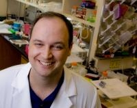 Protein Inhibitor Linked to Cleansing Toxic Tau Protein from Brain