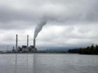 Fish Near Coal-fired Power Plants Have Lower Levels of Mercury, Says Study