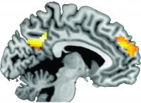 Smoking Cessation Messages in Brain
