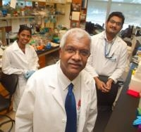Research Initiated With Aim to Starve Breast Cancer Cells
