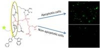 Cell Death Signals Picked Up By Small Molecule Receptor's Lipid Detector