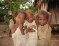Ridding Bushmeat Off the Menu can Worsen Child Anemia, New Study