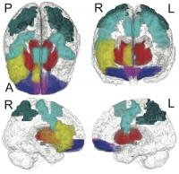 Link Between Drug Abuse and Brain Networks
