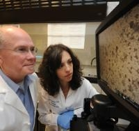 Genetic Mutation Ups Sodium Retention, Blood Pressure: Study