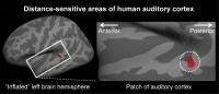 Identification Of Brain Area That Determines Distance From Which Sound Originates