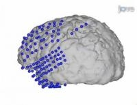 Observing Brain Function With Latest Invasive Imaging Technique