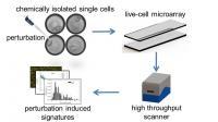 Focus on Disease Traits of Single Cells