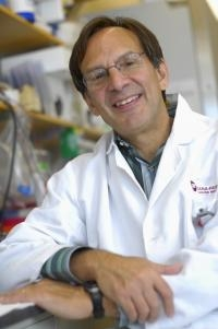 Molecular Link to Obesity and Insulin Resistance in Mice Discovered
