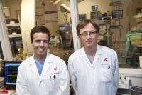 Alternative for Regulating Heart Beat Offered By Innovative New Defibrillator