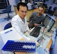 Tug of War Between Two Proteins Plays Critical Role in Production of Superoxide Associated With Cardiovascular Disease