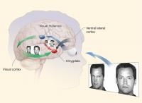Study: Threat Bias Interacts With Combat, Gene to Boost PTSD Risk