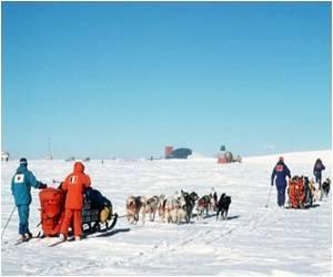 Antarctica: Dream Destination for Tourists