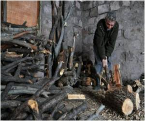 As Armenians Turn Off the Gas, Forests Come Under Threat