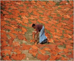 At Bangladesh Tanneries, Workers Pay High Price