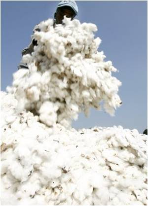Cotton Like Fibre Conducts Electricity