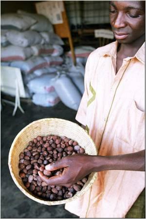 Burkina Faso  Raking In The Moolah With Organic Goods