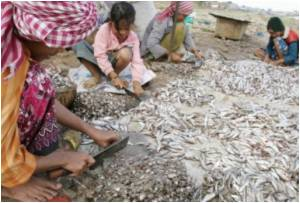 Food Inflation Leaves Cambodia's Poor Hungry