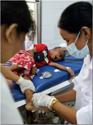 Dengue Deaths in Cambodia This Year Exceed 2006 Toll