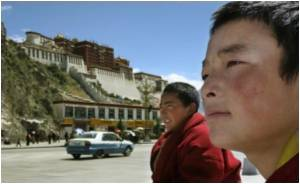 How are Tibetans Able to Thrive at High Altitudes?