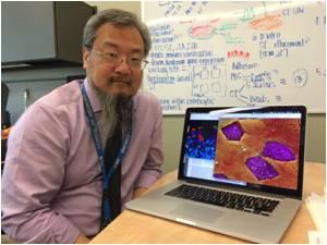 Inflammatory Cytokine Protein Involved in Autoimmune Diseases Has Healing Potential