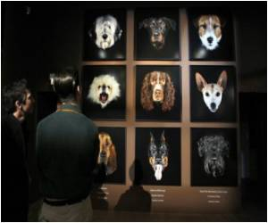 Canine Hall of Fame for French Celebrity Dogs