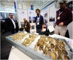 Seafood Decline