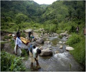 Tropical Forests Resilient to Global Warming: Study