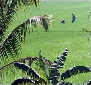 Vasundra Trust is Rewarded for Its Environment Conservation Programmes in Gujarat