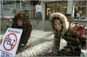 British Animal Rights Radicals in Anglo-French Contamination Plot