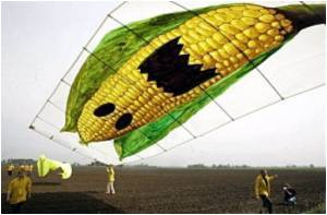 Greeks Put Their Foot Down on Genetically Modified Crops