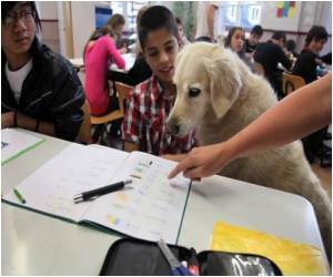 Dogs Improve School Grades in Germany
