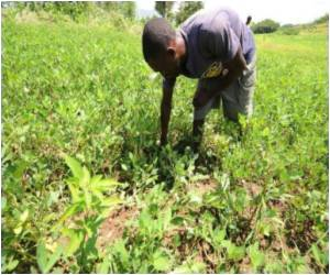 Expert Calls For Efficient Use Of Nitrogen By Farmers