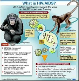 UN Report Revises Stats On AIDS Infection