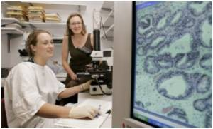 Medical 'Smart Bomb' To Destroy Cancer Cell Roots