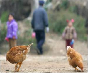 Pregnant Chinese Woman Succumbs to Bird Flu