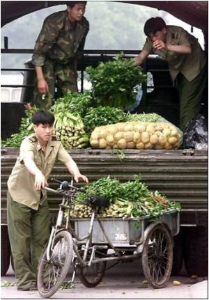China Declares War on Unsafe Foods for Soldiers