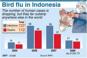 Indonesian Teenager Did Not Die of Bird Flu: Health Minister