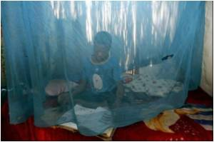 Medical Net Helps Kenya Reduce Malaria Deaths in Children