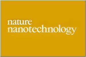 Research On to Predict Nanoparticle-Human Body Interaction