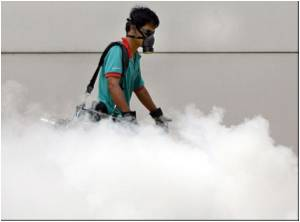 Singapore Dengue Fever Cases Hit Year's Peak