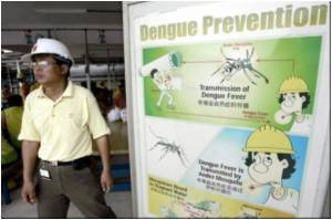 Dengue Fever in Singapore Likely to Increase: Minister
