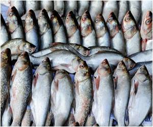 Fish a Day Lowers Diabetes Risk